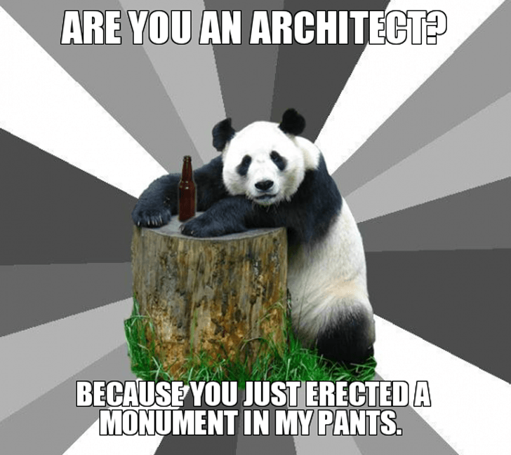 are-you-an-architect-because-you-just-erected-a-monument-in-my-pants
